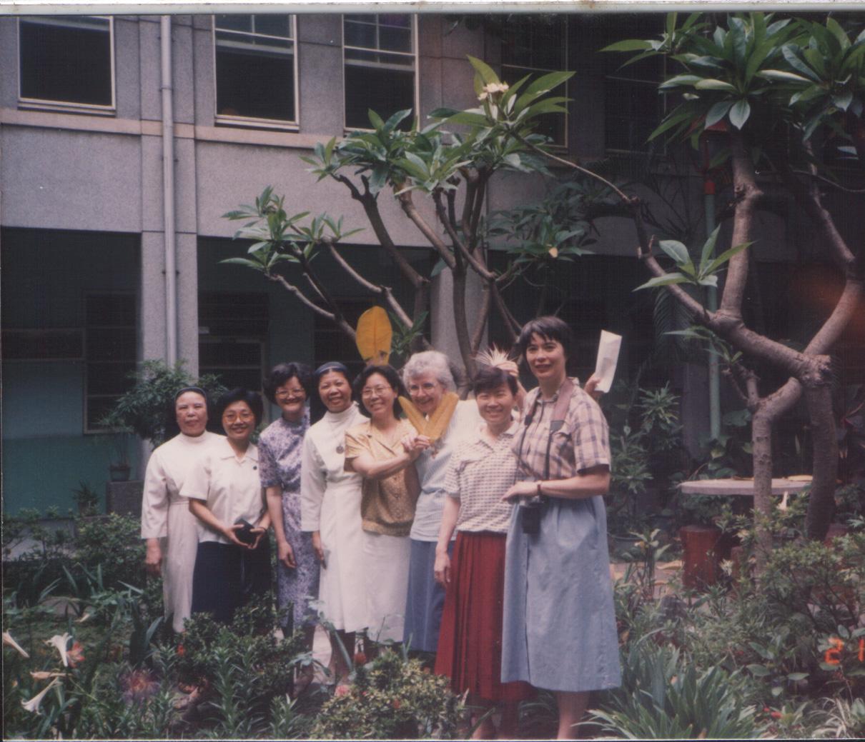 1988時的中庭院子棋盤腳樹